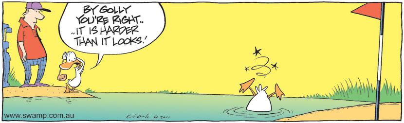 Swamp Cartoon - Swamp Duck Dodgy TuitionMarch 9, 2011