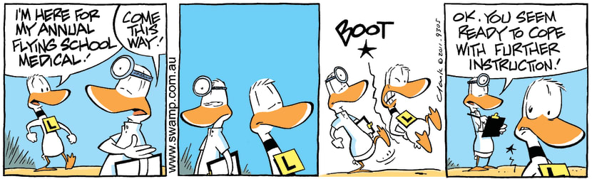 Swamp Cartoon - Ding Duck Annual Medical ComicJune 30, 2011