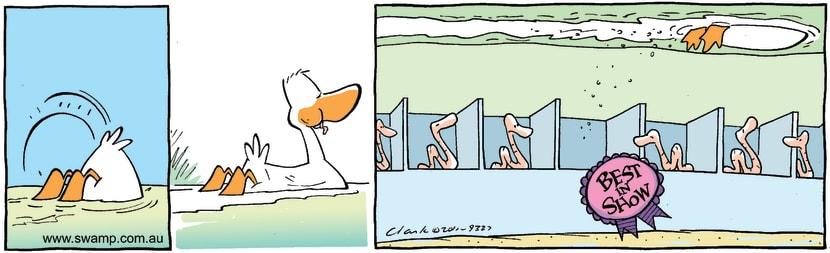 Swamp Cartoon - Best TastingJuly 26, 2011