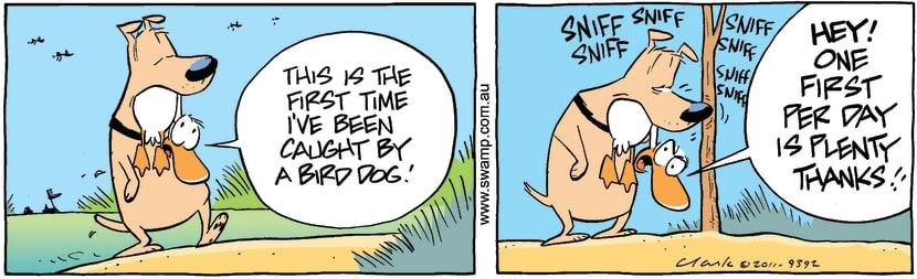 Swamp Cartoon - Duck Retrieving Dog ComicOctober 10, 2011
