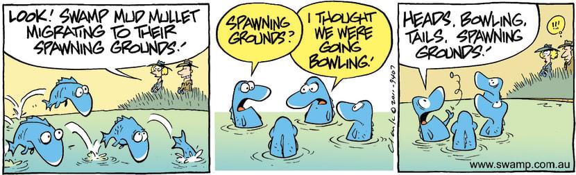 Swamp Cartoon - Mud Mullet MigratingOctober 27, 2011