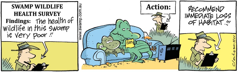 Swamp Cartoon - Old Man Croc CouchMarch 13, 2012