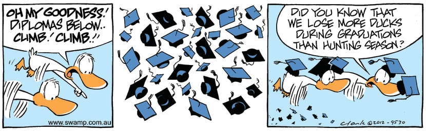 Swamp Cartoon - Flying HazardsMarch 19, 2012