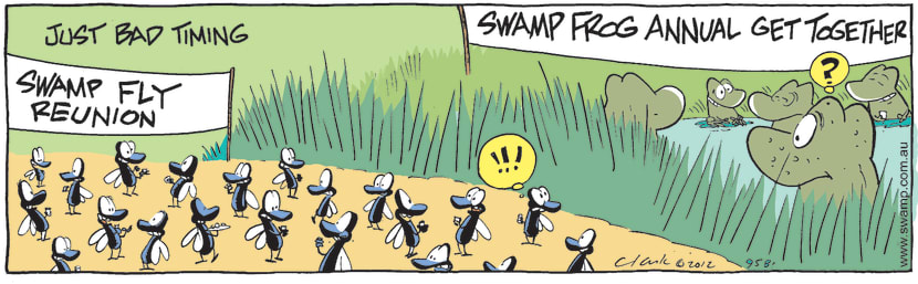Swamp Cartoon - Bad TimngMay 17, 2012