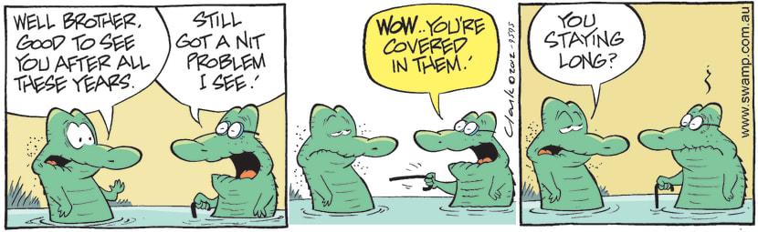 Swamp Cartoon - Family Fun 3June 2, 2012