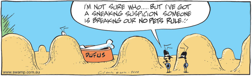 Swamp Cartoon - Tenant SecretsJune 18, 2012