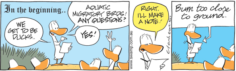 Swamp Cartoon - We Get to be Ducks ComicAugust 25, 2012