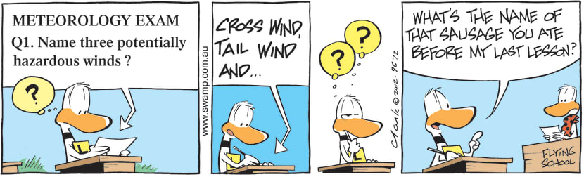 Swamp Cartoon - Ding Duck Hazardous Winds ComicAugust 31, 2012