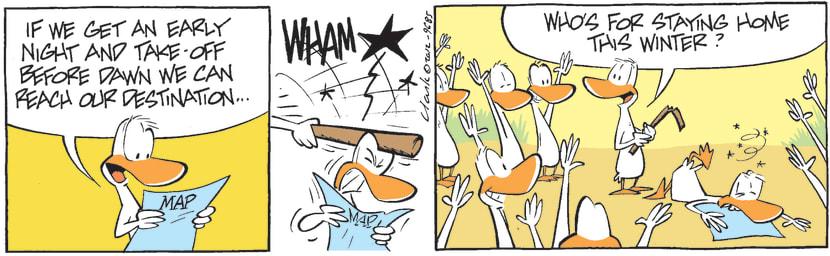 Swamp Cartoon - Early Night ComicSeptember 15, 2012