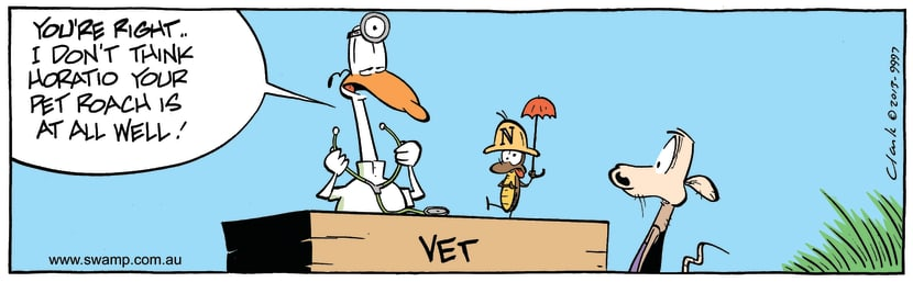 Swamp Cartoon - Vet Visit ComicJuly 11, 2014