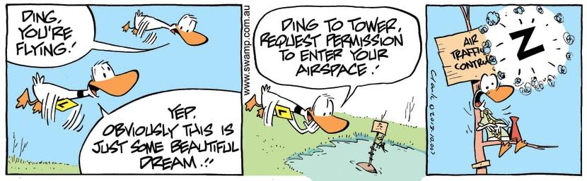 Swamp Cartoon - Ding Duck Flying ComicOctober 19, 2013