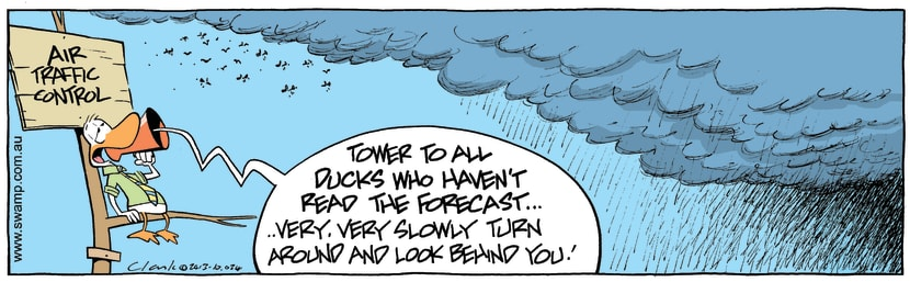 Swamp Cartoon - Air Traffic Control Weather Forecast ComicNovember 20, 2013