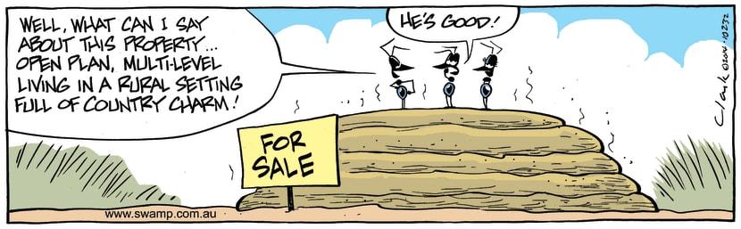 Swamp Cartoon - Real Estate Agent ComicAugust 12, 2014