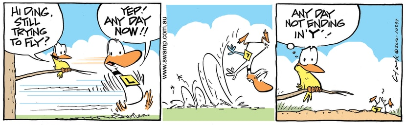Swamp Cartoon - Ding Duck Flying Attempt ComicDecember 15, 2014