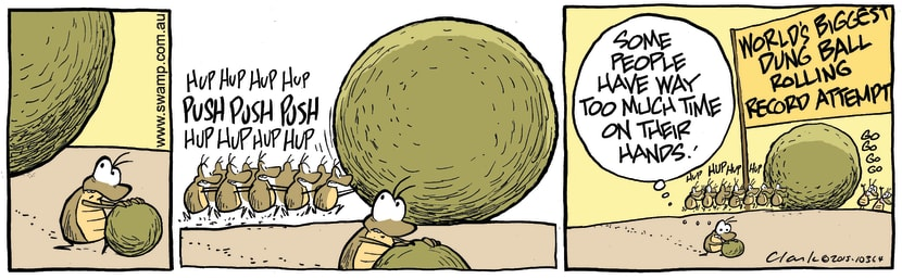Swamp Cartoon - Dung Ball Rolling RecordMarch 18, 2015