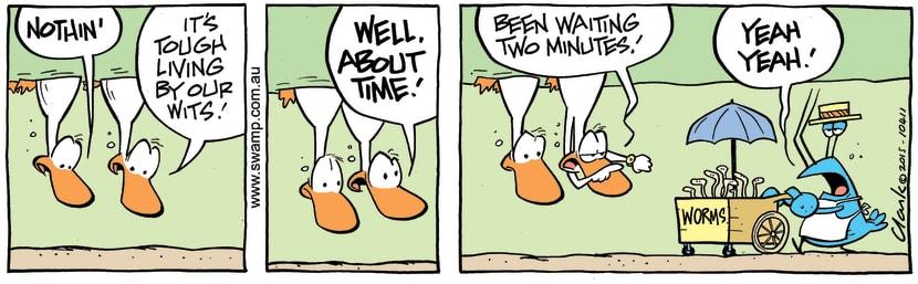 Swamp Cartoon - Swamp Ducks Worms DeliveryMay 13, 2015