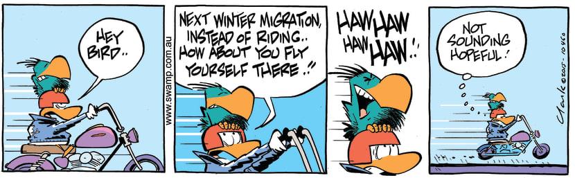 Swamp Cartoon - Bludgerigar Riding Wild Duck ComicJuly 9, 2015