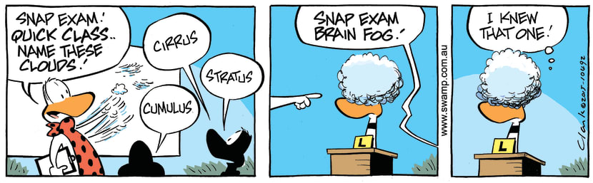 Swamp Cartoon - Ding Duck Brain Fog ComicAugust 15, 2015
