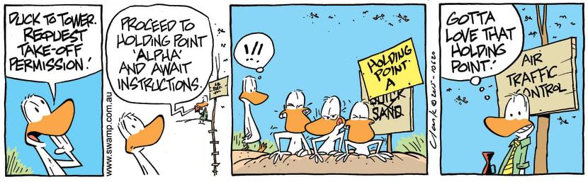 Swamp Cartoon - Ducks Holding Point ComicJanuary 13, 2016