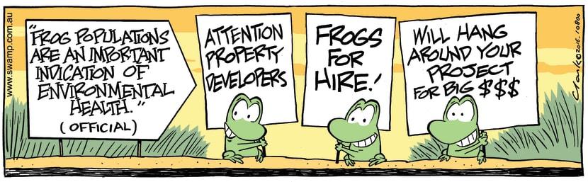 Swamp Cartoon - Swamp Frog Populations ComicAugust 9, 2016