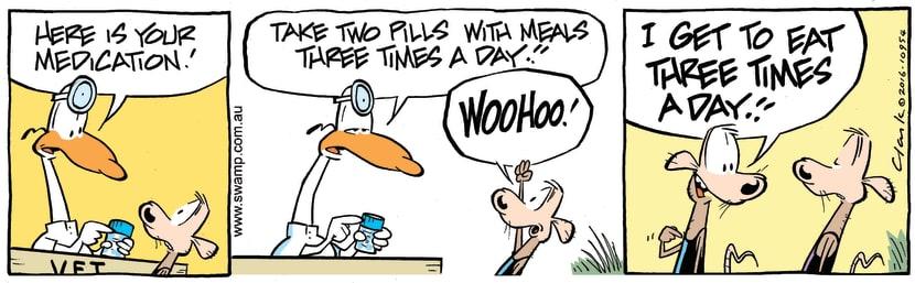 Swamp Cartoon - Cheese Rat Tablets ComicFebruary 6, 2017