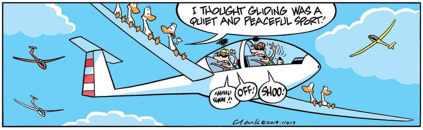 Swamp Cartoon - Gliding Peaceful Sport ComicAugust 3, 2018
