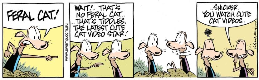 Swamp Cartoon - Chives Rat Meets Tiddles ComicAugust 4, 2018