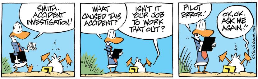 Swamp Cartoon - Accident Investigation Pilot Error ComicNovember 15, 2018