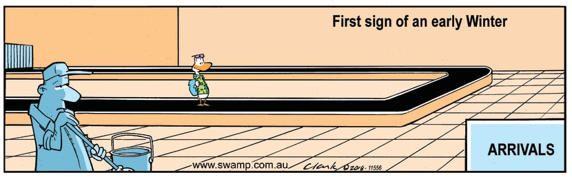 Swamp Cartoon - Swamp Duck Early Winter ComicJanuary 14, 2019