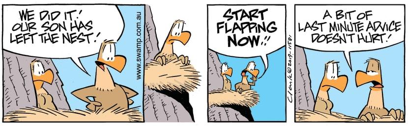 Swamp Cartoon - Swamp Eagles Advice ComicFebruary 11, 2019