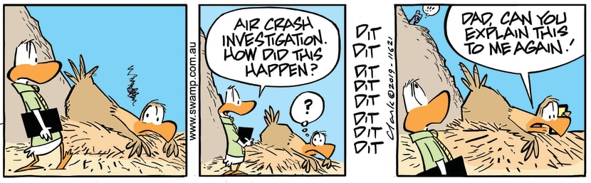 Swamp Cartoon - Baby Eagle InvestigationMarch 29, 2019