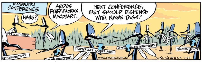 Swamp Cartoon - Mosquito Conference TagsJune 6, 2019