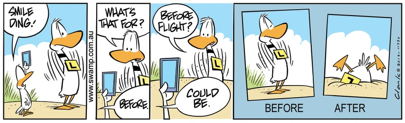 Swamp Cartoon - Ding Duck Before PhotoAugust 2, 2019