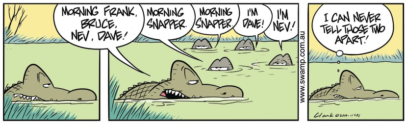 Swamp Cartoon - Good Morning SnapperAugust 9, 2019