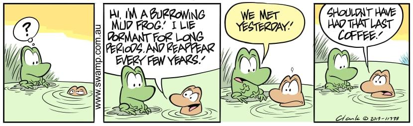 Swamp Cartoon - Mort Frog BurrowingAugust 12, 2019