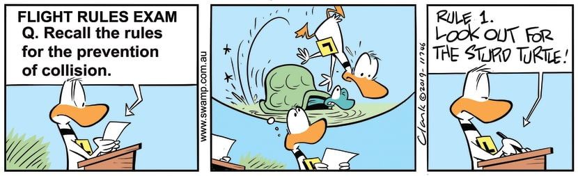 Swamp Cartoon - Ding Duck PreventionAugust 27, 2019