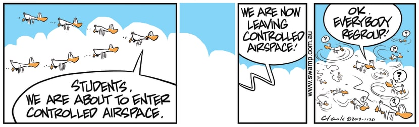 Swamp Cartoon - Aviator Ducks Controlled Air SpaceSeptember 7, 2019