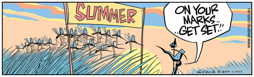 Swamp Cartoon - Mosquitoes Herald In SummerSeptember 26, 2019