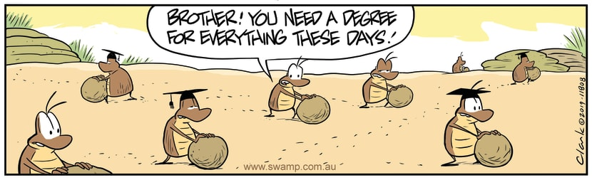 Swamp Cartoon - Dung Beetles DegreeNovember 1, 2019