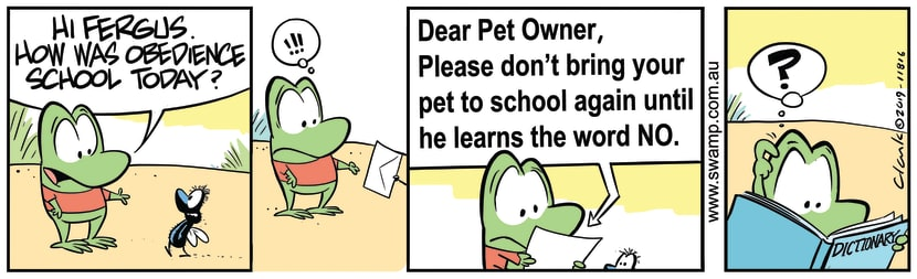 Swamp Cartoon - Fergus Fly Note From TeacherNovember 11, 2019
