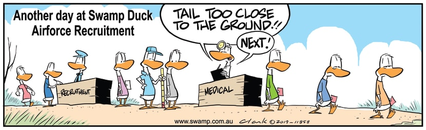 Swamp Cartoon - Aviator Ducks MedicalDecember 31, 2019