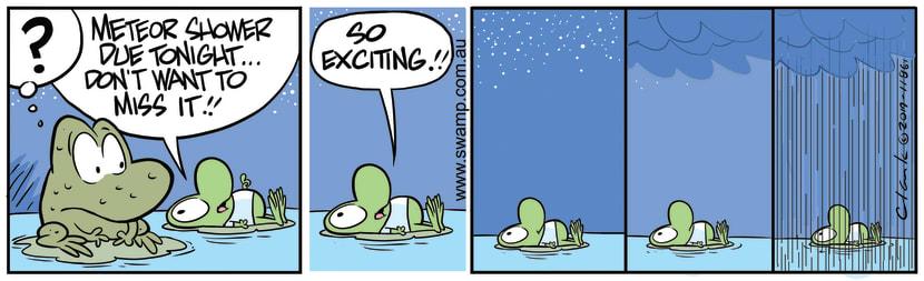 Swamp Cartoon - Mort Frog Meteor ShowerJanuary 3, 2020