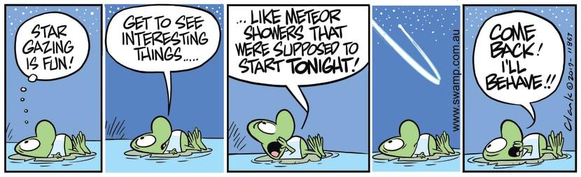 Swamp Cartoon - Meteor Shower TonightJanuary 6, 2020