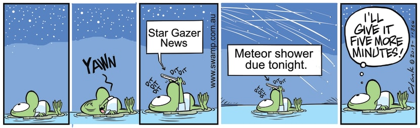 Swamp Cartoon - Mort Frog Star Gazer NewsJanuary 7, 2020