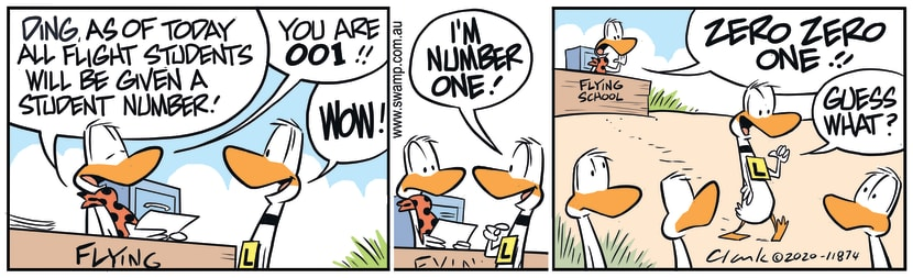 Swamp Cartoon - Ding Duck Number OneJanuary 20, 2020