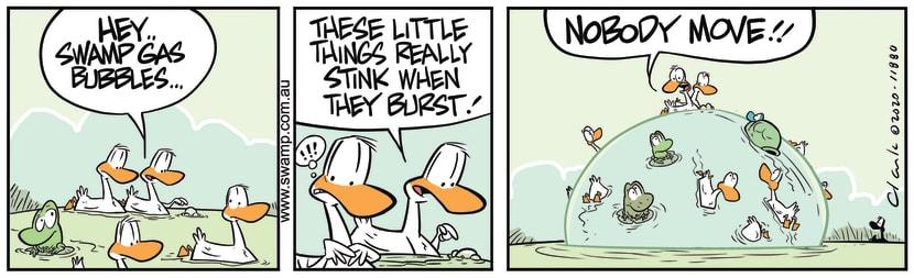 Swamp Cartoon - Swamp Ducks Gas BubblesJanuary 27, 2020