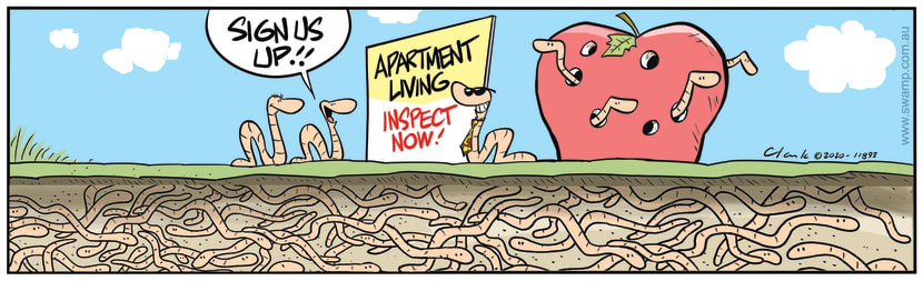 Swamp Cartoon - Sign us up for Apartment LivingFebruary 11, 2020