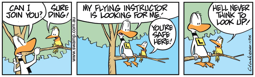 Swamp Cartoon - Flying Instructor Looking for DingFebruary 26, 2020