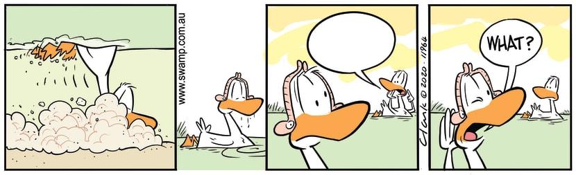 Swamp Cartoon - Duck Has Worm MuffsMay 5, 2020
