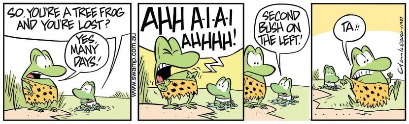 Swamp Cartoon - Tree Frog Lost Many DaysJune 1, 2020